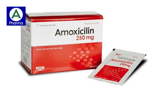 Thuốc kháng sinh Amoxicillin 250mg