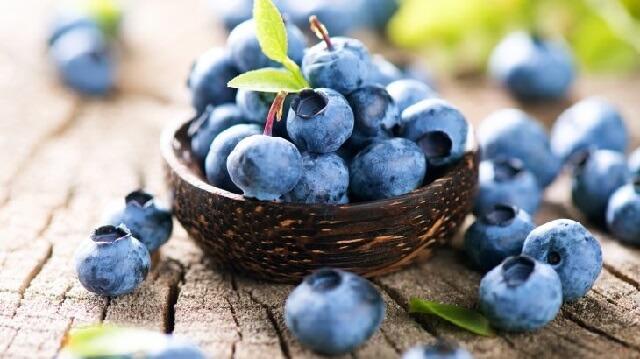 Quả việt quất không chỉ bổ dưỡng mà còn ngăn ngừa các bệnh lý