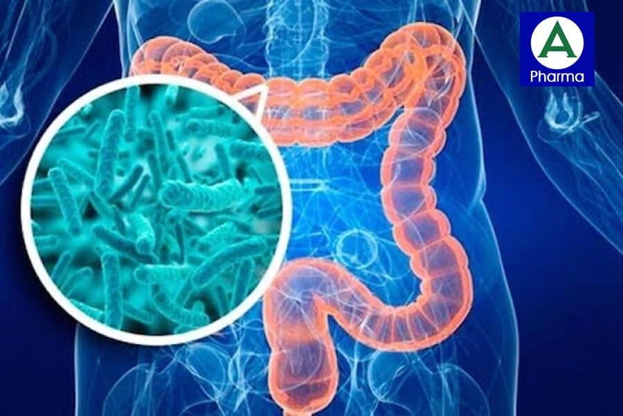 Fermentix Plus - Sản phẩm men vi sinh số 1 Châu  u tăng cường hơn 10 tỷ lợi khuẩn cho đường ruột
