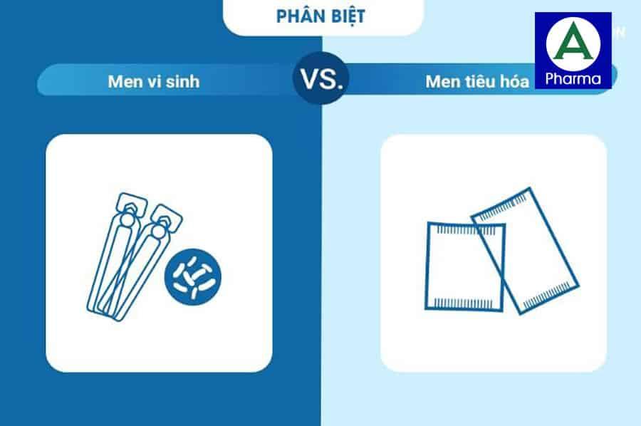 Men vi sinh và men tiêu hóa là 2 loại hoàn toàn khác nhau