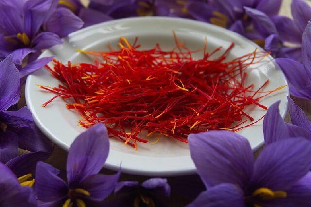 Nhuỵ hoa nghệ tây điều trị hội chứng suy giảm trí nhớ