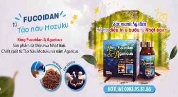 Viên uống hỗ trợ điều trị ung thư King Fucoidan & Agaricus Nhật Bản