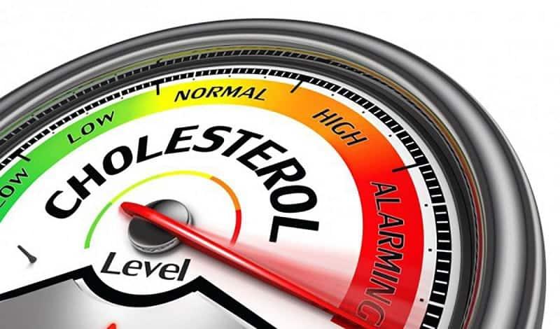 Bệnh cholesterol cao