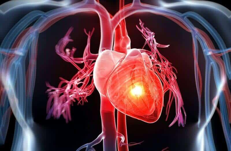 Bệnh tim không sử dụng cây phan tả diệp