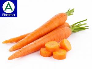 Giới thiệu về cây cà rốt