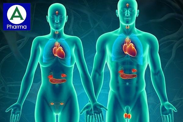Các bệnh về nội tiết