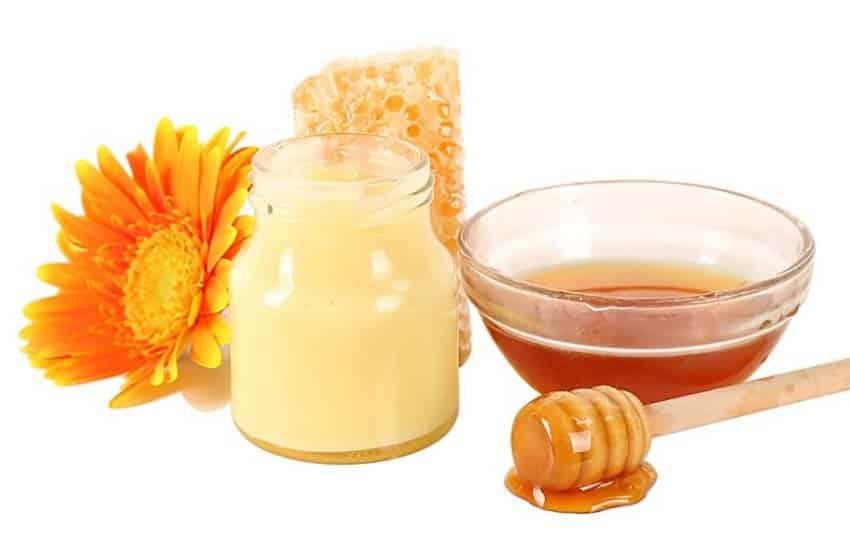 Cách nhận biết sữa ong chúa tươi bằng mật ong