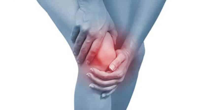 Công dụng, lợi ích cho sức khỏe con người của thảo dược Cây Bướm Bạc