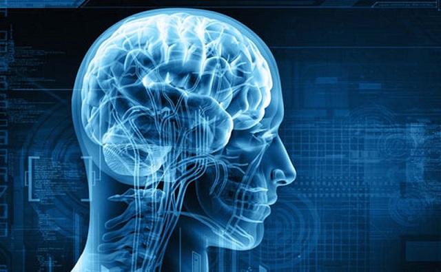 Tác dụng tăng cường trí nhớ