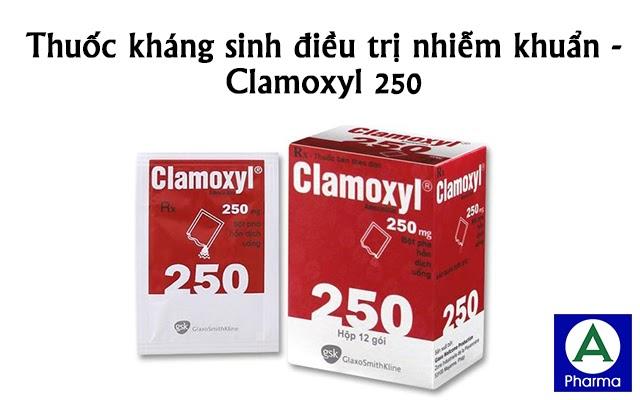Clamoxyl 250 là thuốc gì?