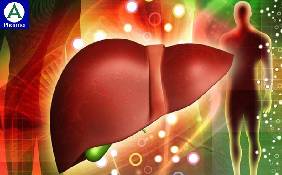 Thuốc Legalon 70 Protect giúp cho lá gan khỏe mạnh hơn