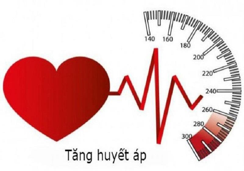 Đặc biệt, giúp hạ huyết áp an toàn mà không làm giãn mạch máu