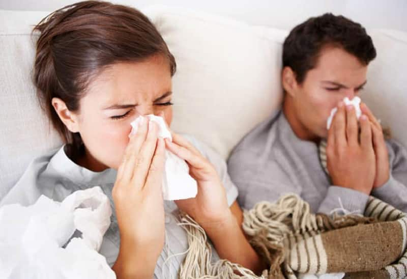 Tác dụng chữa bệnh viêm mũi, viêm xoang