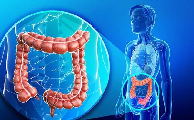 Trị chứng tiêu chảy cấp gây ra bởi hội chứng ruột kích thích ở người lớn vô cùng hữu hiệu