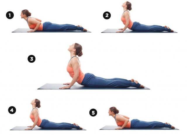 Một số bài tập thể dục cơ bản giúp tăng cường sức khỏe.