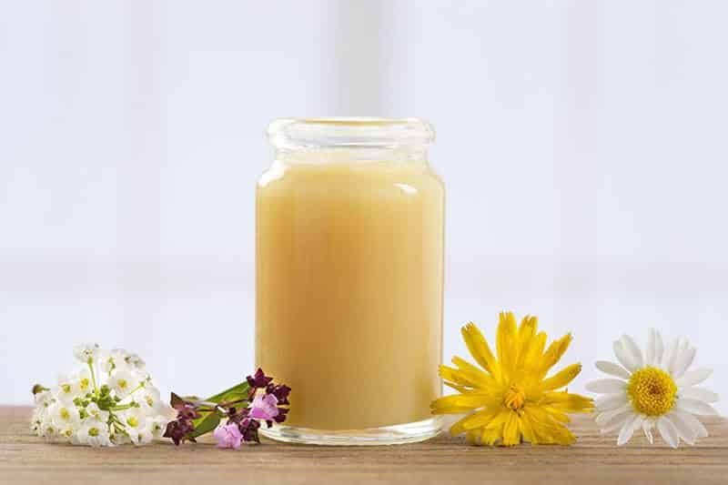 Sữa ong chúa tươi