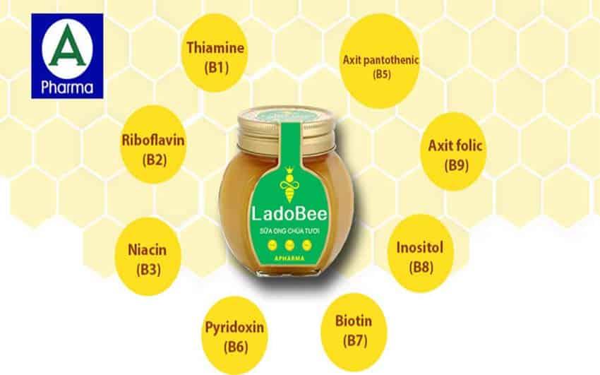 Thành phần dinh dưỡng tuyệt vời từ sữa ong chúa tươi