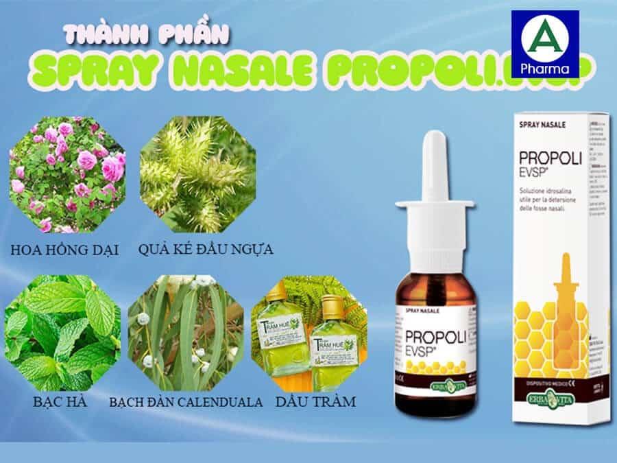 Thành phần thảo dược có trong nước xịt mũi Spray Nasale Propoli.Evsp