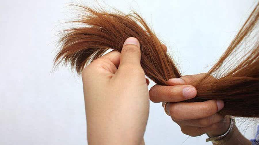 Tinh dầu quế dùng để dưỡng tóc